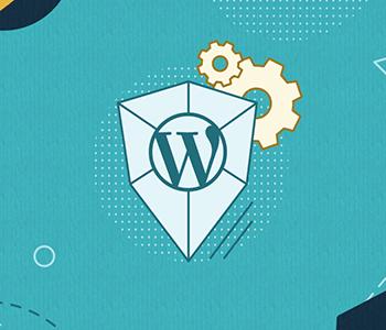 Wordpress Sürümünü Gizliyoruz