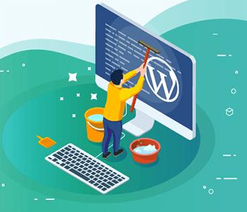 Wordpress Gereksiz Tema ve Eklenti Kaldırma