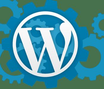 Wordpress Optimizasyonu Nedir?